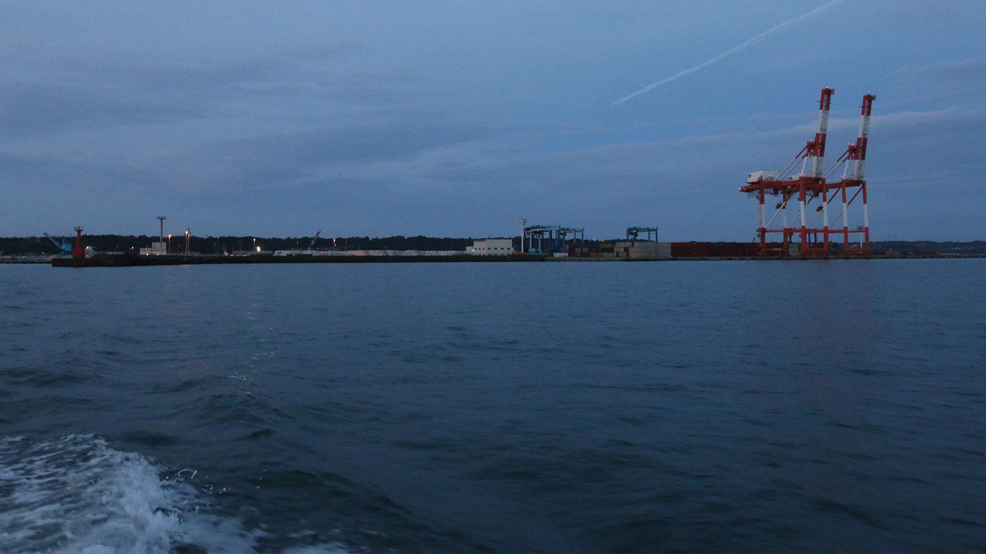 サワラ漁夜明け