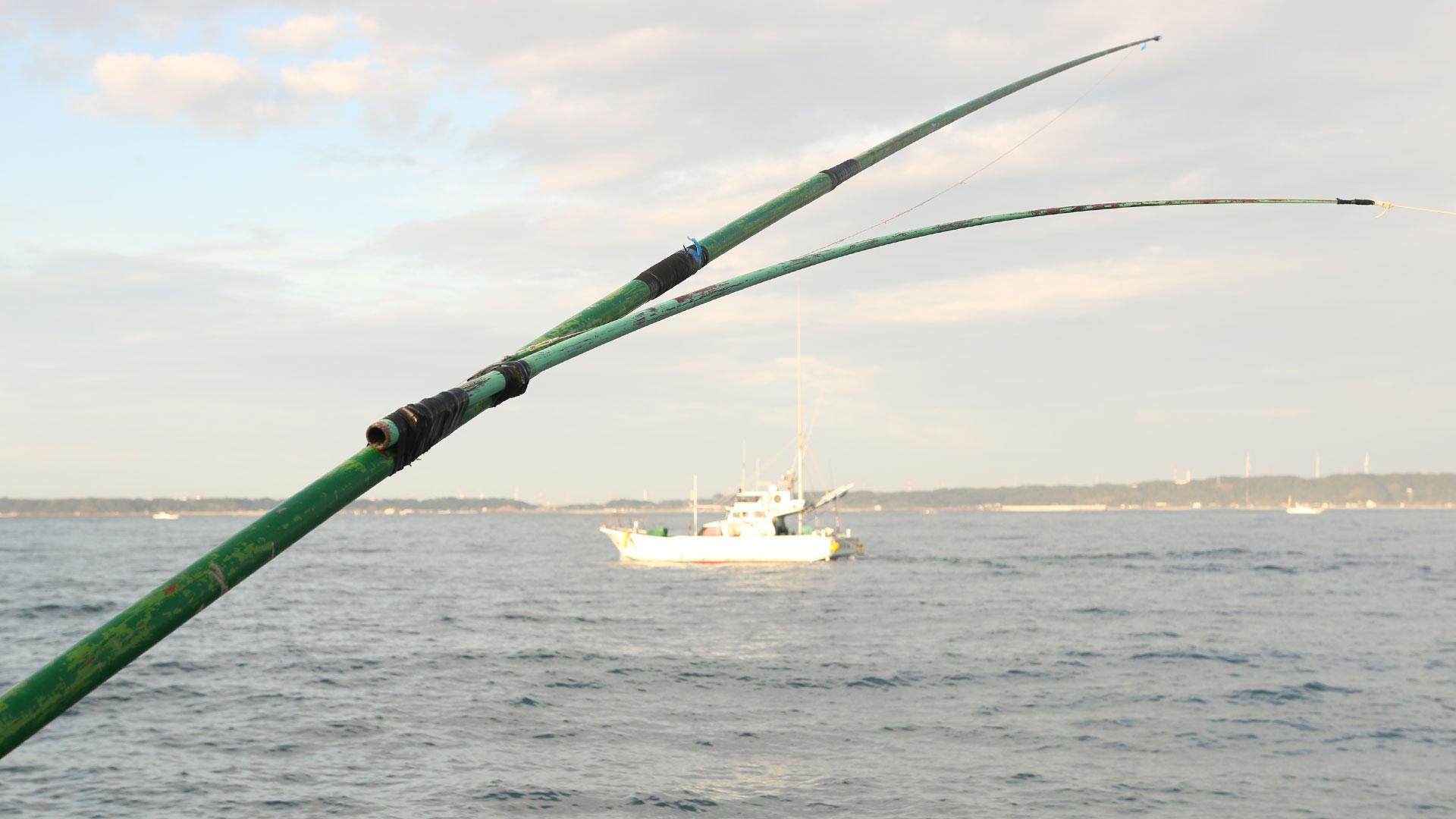 ひき縄釣り